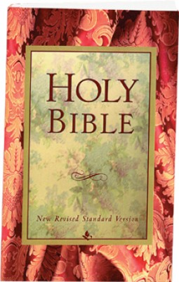 NRSV Low Cost Standard Bible, Paperback